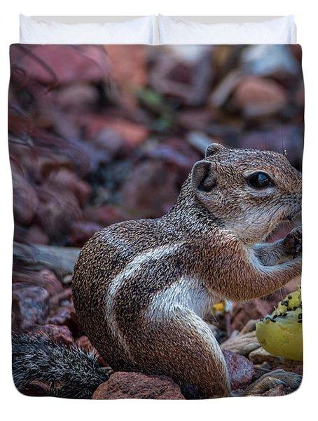 Desert Antelope Squirrel Munching On Cactus Fruit Duvet Cover