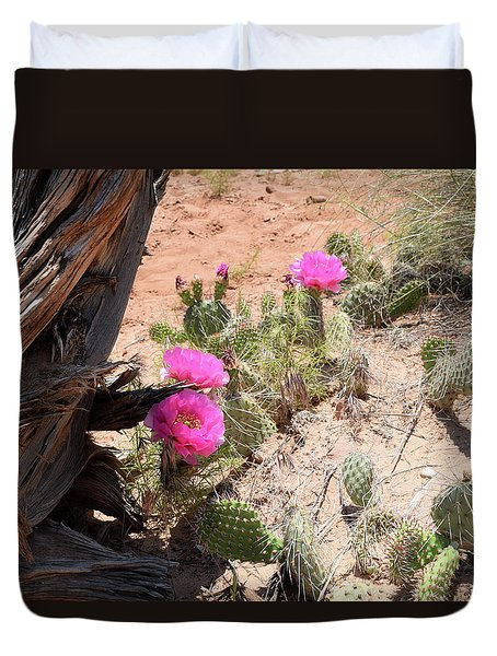 Duvet Cover featuring the photograph Desert Beauty by Anne Mott