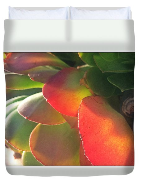 Desert Beauty Duvet Cover by Sherry Flaker