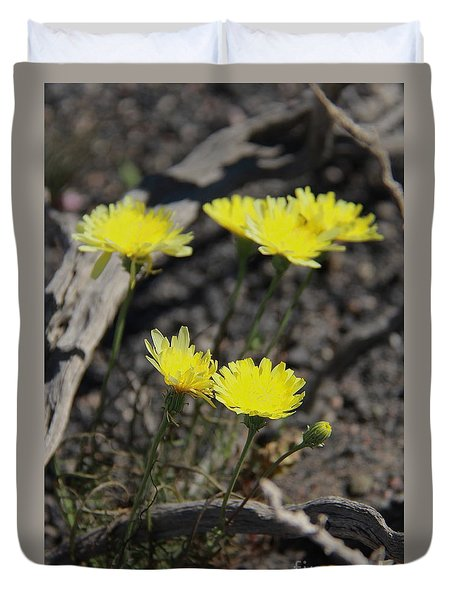 Duvet Cover featuring the photograph Desert Dandelion by Suzanne Oesterling