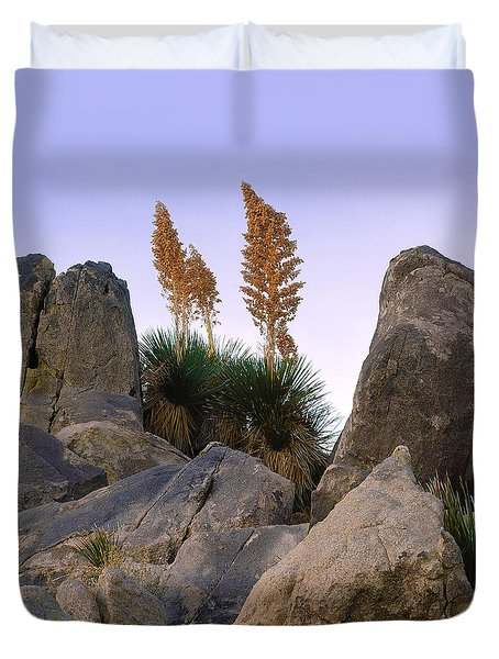 Desert Flags - Cropped Version Duvet Cover