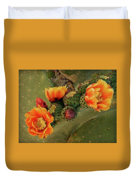 Duvet Cover featuring the photograph Desert Flame by Lucinda Walter