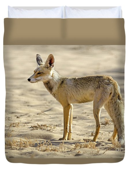desert Fox 02 Duvet Cover