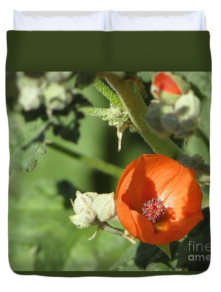 Desert Globemallow Bloom 215 Duvet Cover