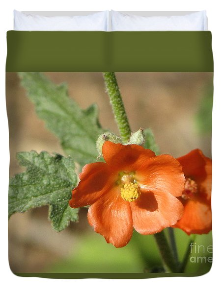 Desert Globemallow Bloom 220 Duvet Cover