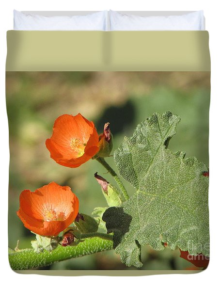 Desert Globemallow Bloom 226 Duvet Cover
