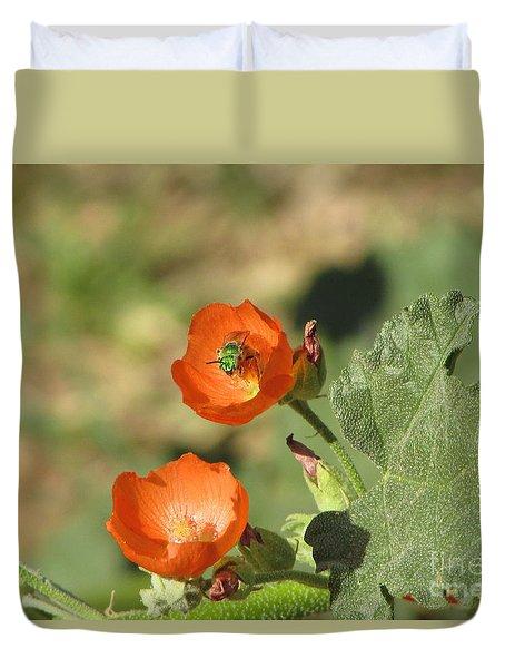 Desert Globemallow Blooms 227 Duvet Cover