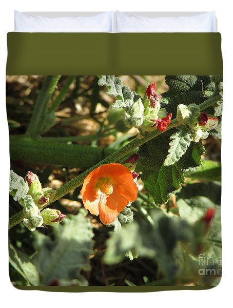 Desert Globwmallow Bloom 236 Duvet Cover
