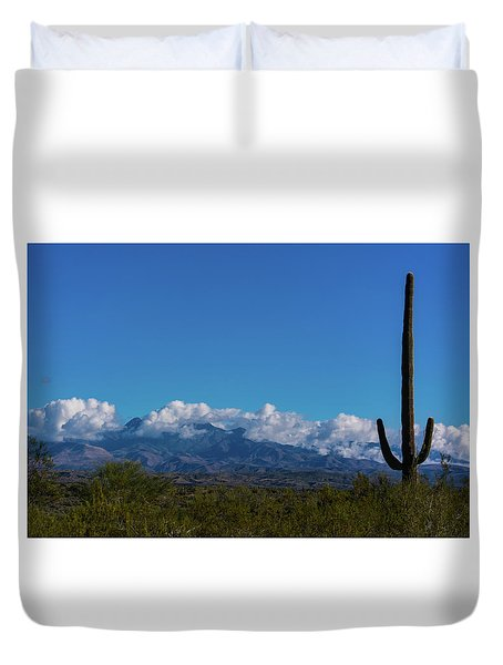 Desert Inversion Cactus Duvet Cover