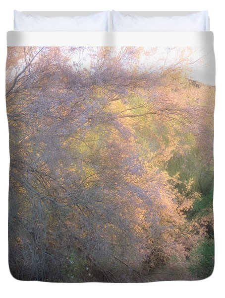 Desert Ironwood Blooming In The Golden Hour Duvet Cover