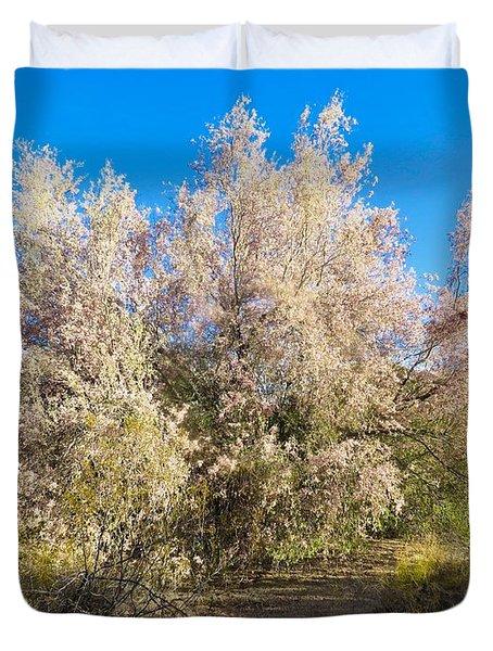 Desert Ironwood Tree In Bloom - Early Morning Duvet Cover