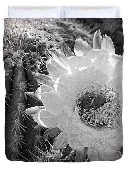 Desert Queen Duvet Cover