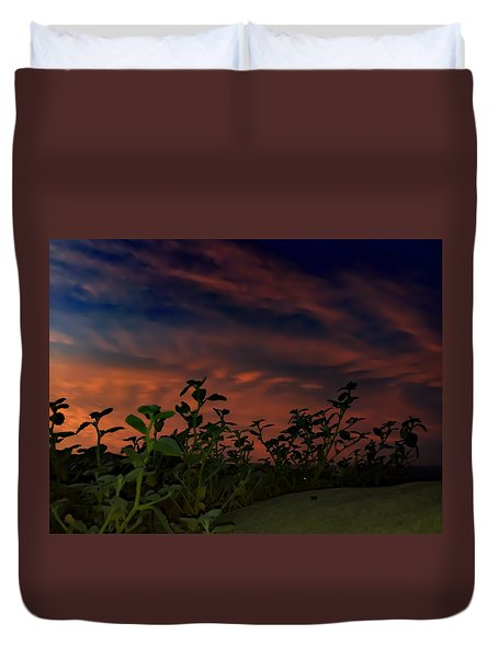 Desert Sunset Duvet Cover by Chris Tarpening