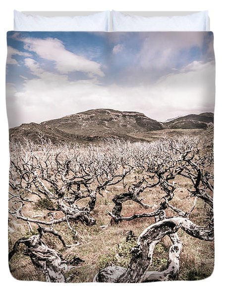 Desolation Duvet Cover by Andrew Matwijec