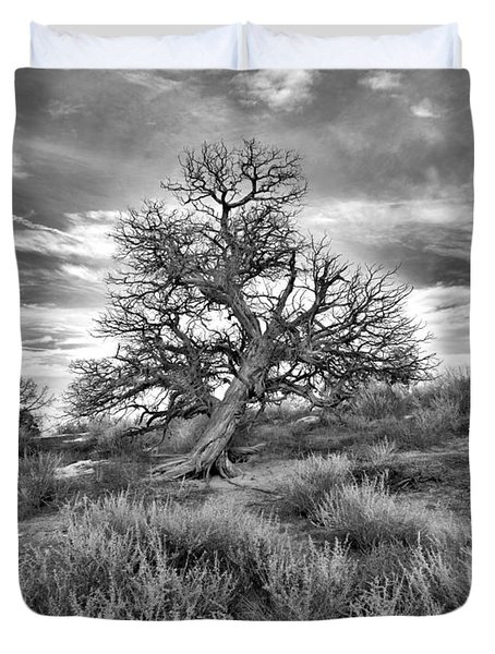 Devils Canyon Tree Duvet Cover