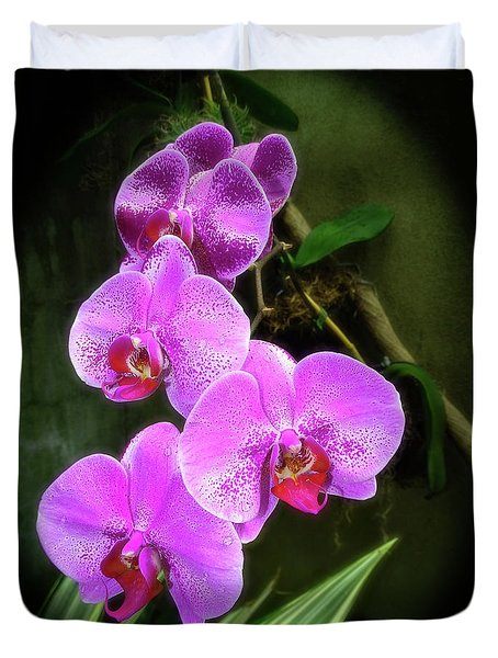 Dew-kissed Moth Orchids Duvet Cover