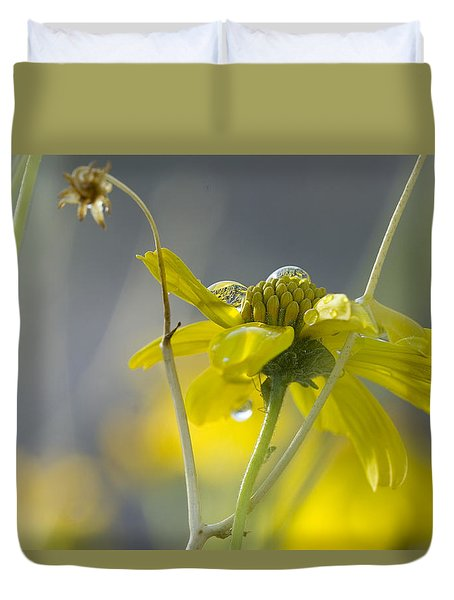 Dew On A Desert Bloom Duvet Cover by Sue Cullumber
