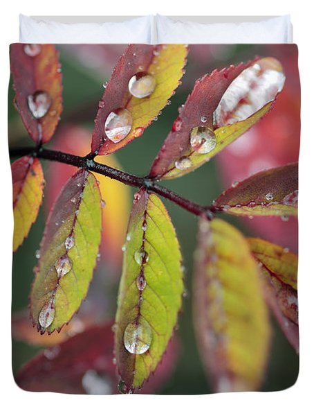 Dew On Wild Rose Leaves In Fall Duvet Cover by Darwin Wiggett
