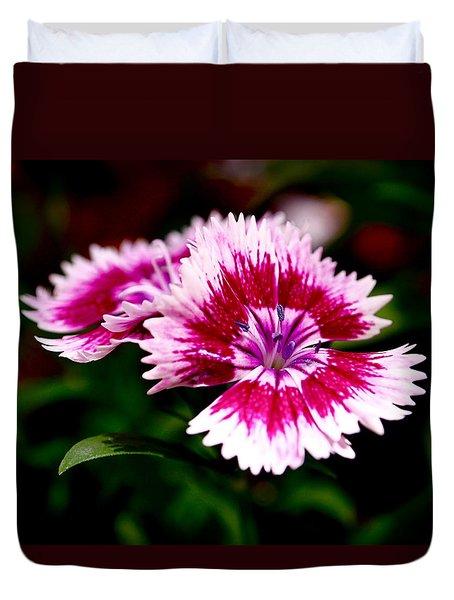 Dianthus Duvet Cover by Rona Black