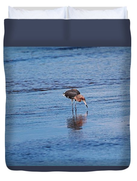 Duvet Cover featuring the photograph Ding Darling's Number One II by Michiale Schneider