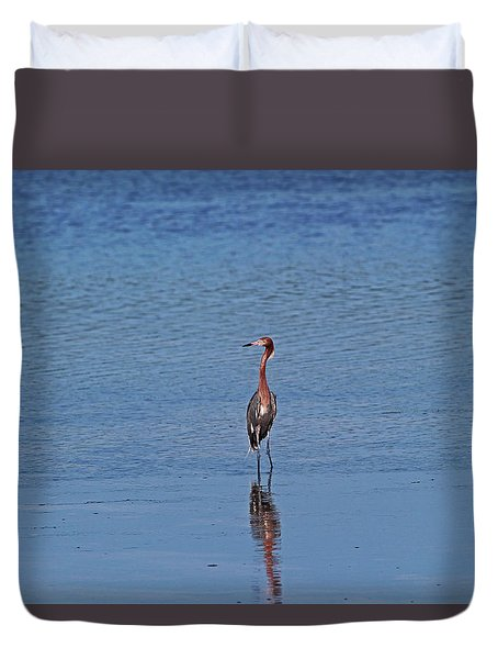 Duvet Cover featuring the photograph Ding Darling's Number One IIi by Michiale Schneider