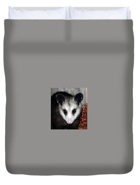 Dining Possums Vii Duvet Cover