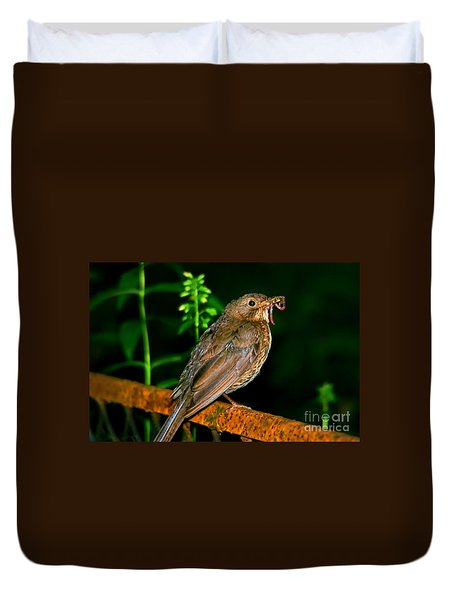Duvet Cover featuring the photograph Dinner Time  by Mariola Bitner