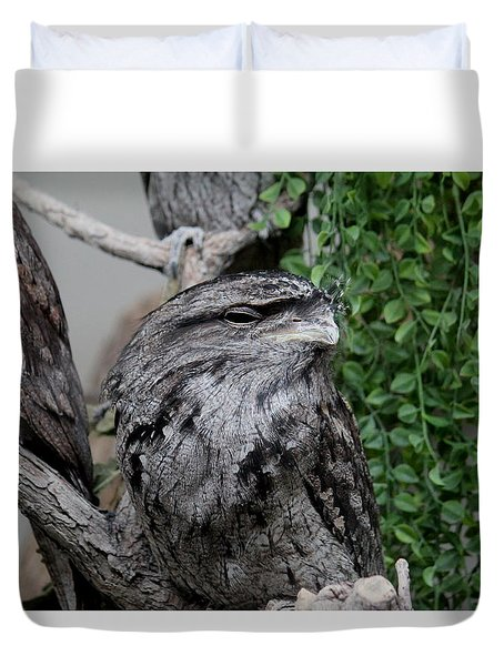 Disguised Duvet Cover
