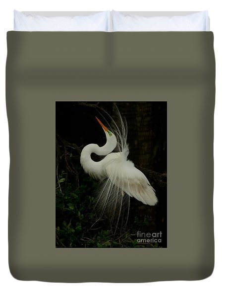 Displaying In The Shadows Duvet Cover by Myrna Bradshaw