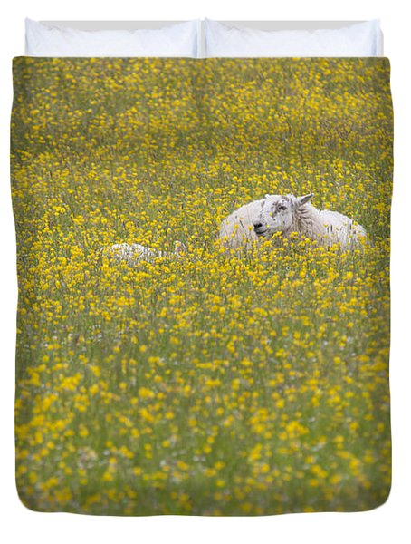 Do Ewe Like Buttercups? Duvet Cover