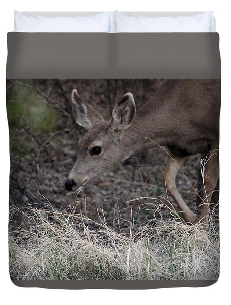 Doe Carefully Grazing In Tombstone Duvet Cover by Colleen Cornelius