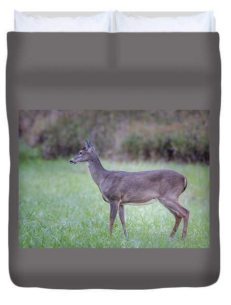 Duvet Cover featuring the photograph Doe In Cades Cove by Tyson Smith