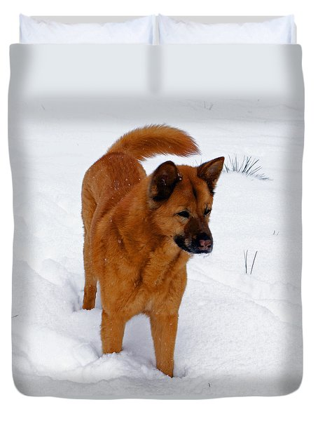 Dog Days Of Winter Duvet Cover