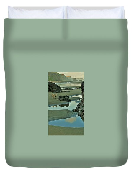 dog on Irish Beach Duvet Cover