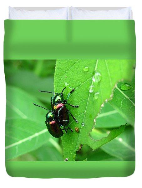 Dogbane Beetles Duvet Cover
