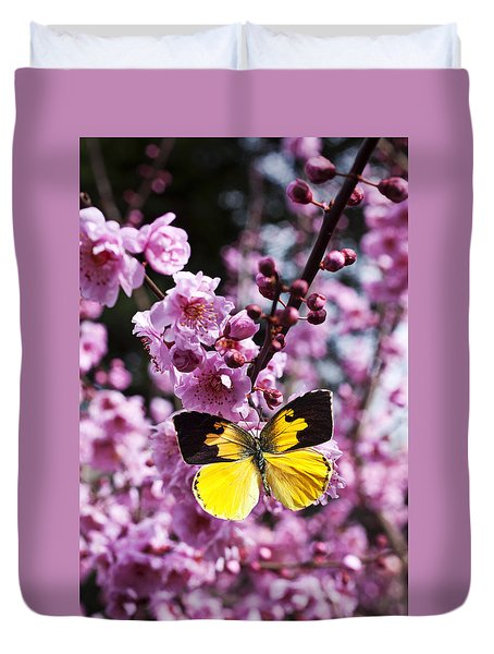 Dogface Butterfly In Plum Tree Duvet Cover by Garry Gay