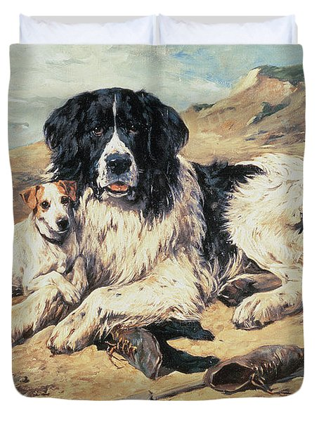 Dogs Watching Bathers Duvet Cover by John Emms