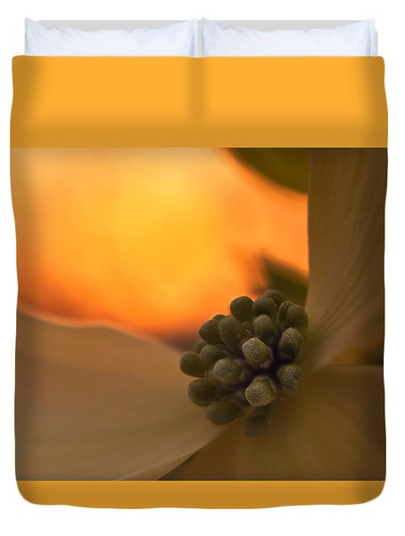 Dogwood Bloom Duvet Cover by Craig Szymanski