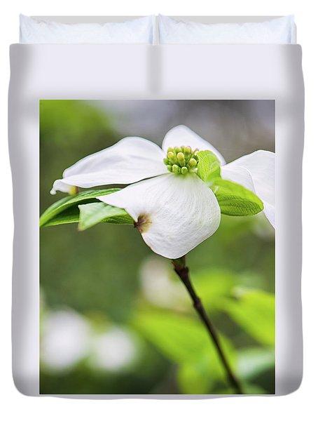 Dogwood Blossom Standing Duvet Cover