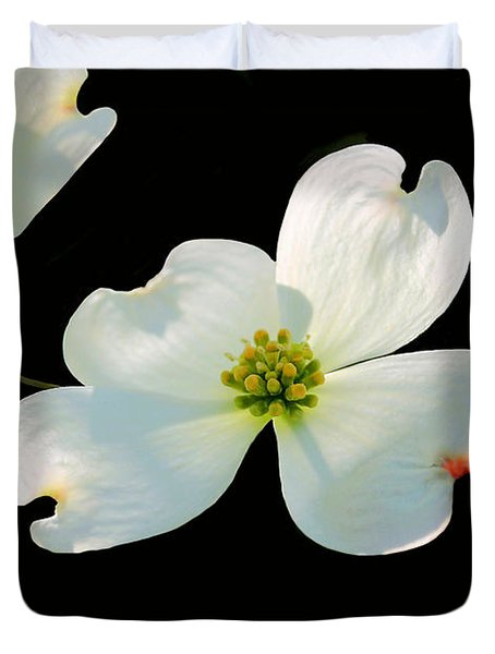 Dogwood Blossoms Duvet Cover by Kristin Elmquist