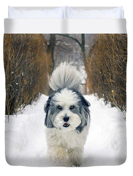 Duvet Cover featuring the photograph Doing The Dog Walk by Keith Armstrong