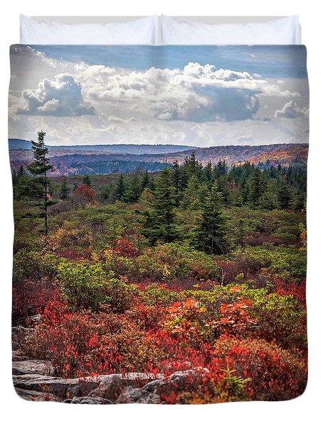 Dolly Sods Wilderness In Autumn 4273 Duvet Cover
