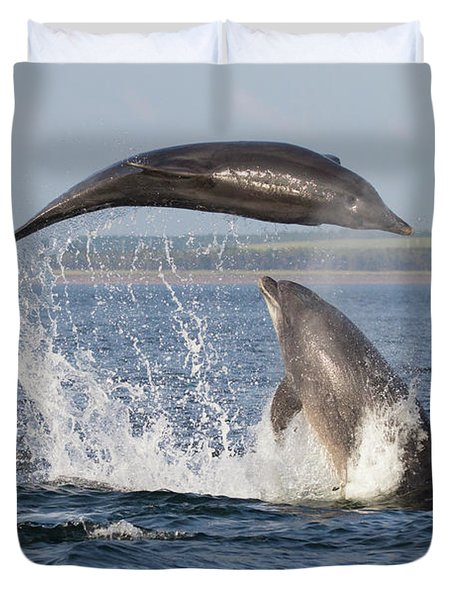 Dolphins Having Fun Duvet Cover