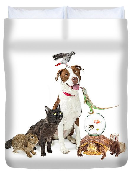 Domestic Pets Group Together With Copy Space Duvet Cover