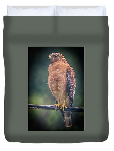 Duvet Cover featuring the photograph Dominique The Hawk by Michael Sussman