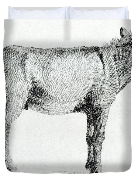 Donkey Duvet Cover by George Stubbs