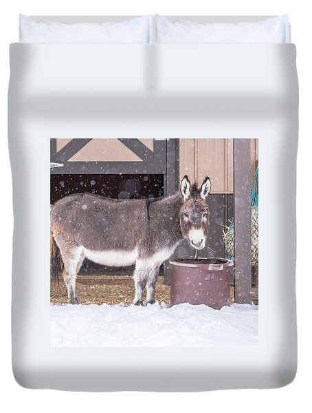 Donkey Watching It Snow Duvet Cover