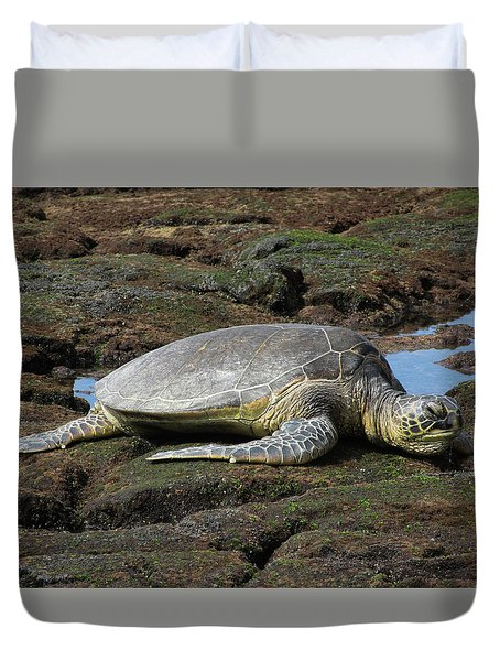 Duvet Cover featuring the photograph Don't Wake Me by Pamela Walton