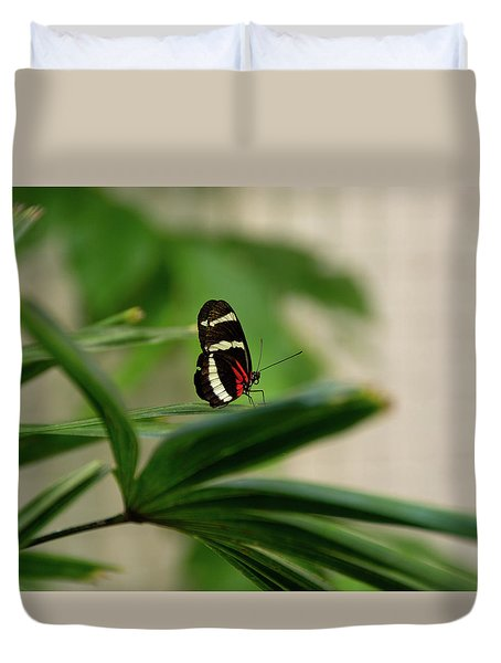 Doris Longwing Butterfly Duvet Cover