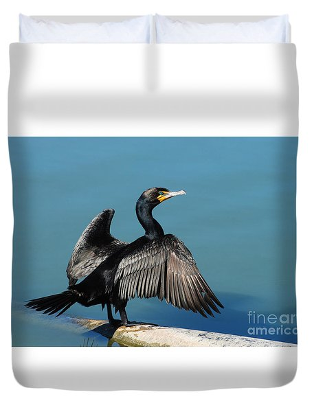 Double-crested Cormorant Spreading Wings Duvet Cover by Merrimon Crawford